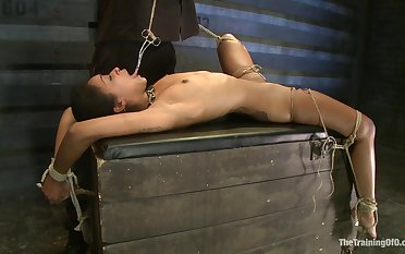 Felonious skinned call-girl thither small tits endures different kinds of BDSM torture